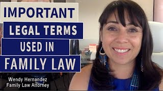 Museum District Best Family Law Attorney